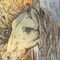 Illusion d'optique artistique - Cheval ou grenouille?