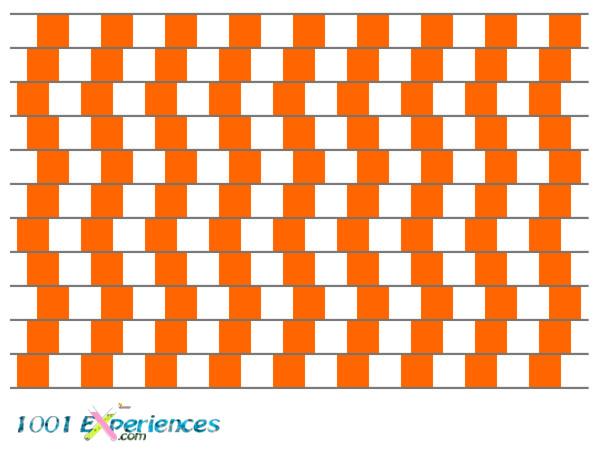 Illusion d'optique géométrique d'un damier