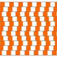 Illusion d'optique géométrique - Lignes parallèles?