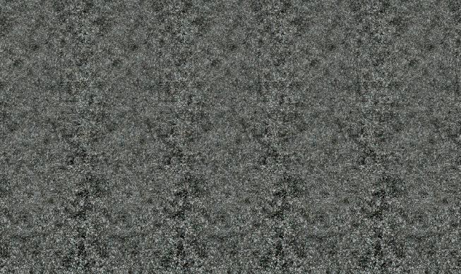 Stéréogramme 3d d'une chauve-souris
