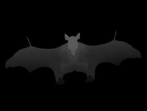 Image 3D d'une chauve-souris