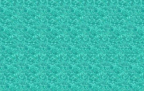 Stéréogramme de dauphins