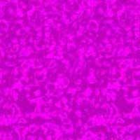 Stéréogramme d'un flamant rose
